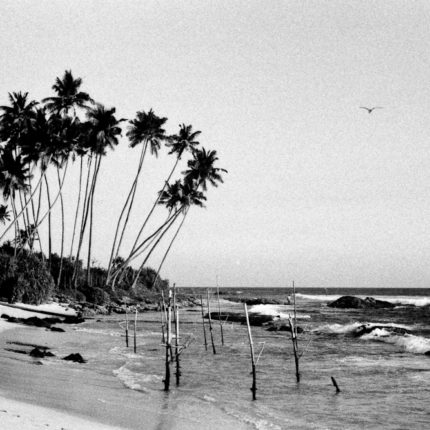 Playa Sri Lanka © Nacho Rivera